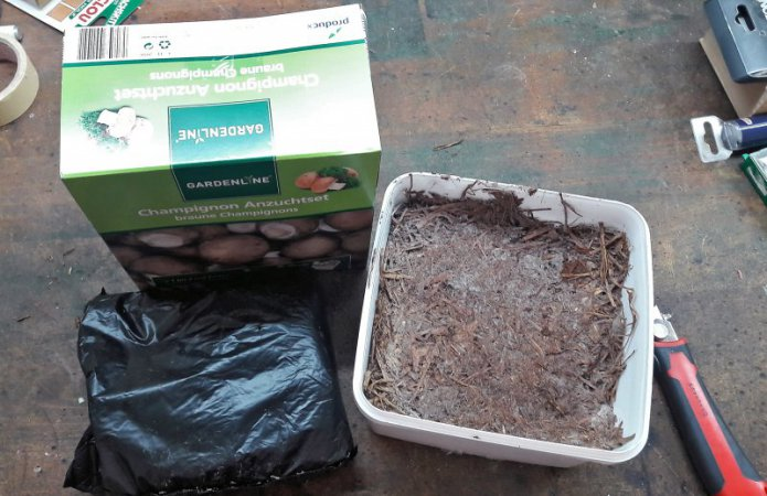 Unboxing: Das Set ist in einer Plastikschale, einem Beutel voll Deckerde und dem Karton-Deckel verpackt