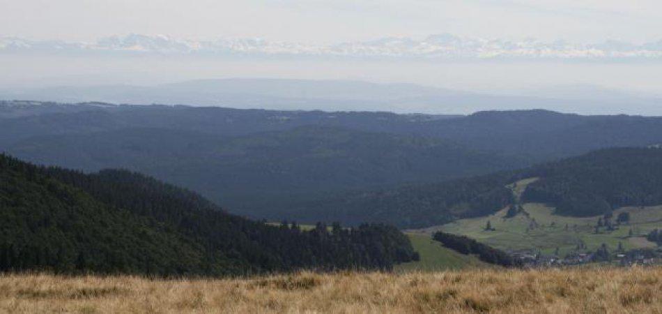 Alpenpanorama vom Herzogenhorn aus.
