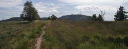 Der (West-)Weg zur Hornisgrinde (hinten Rechts)